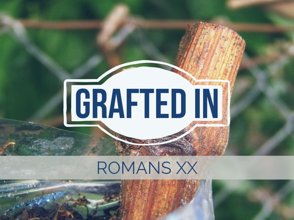 Romans XX - Grafted In