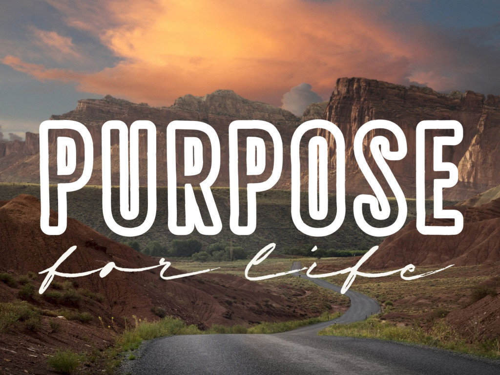 Purpose For Life